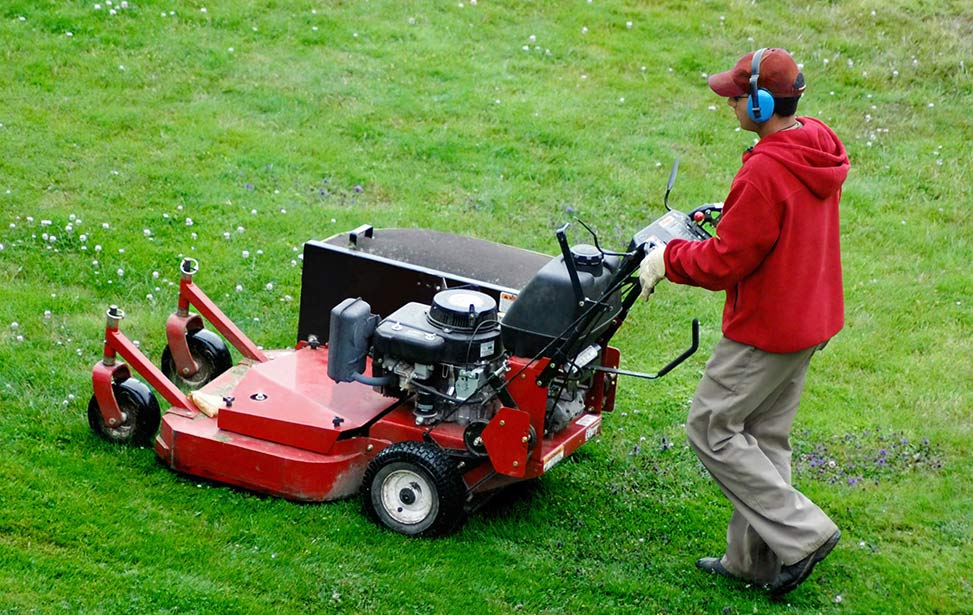 Man mowing a lawn image